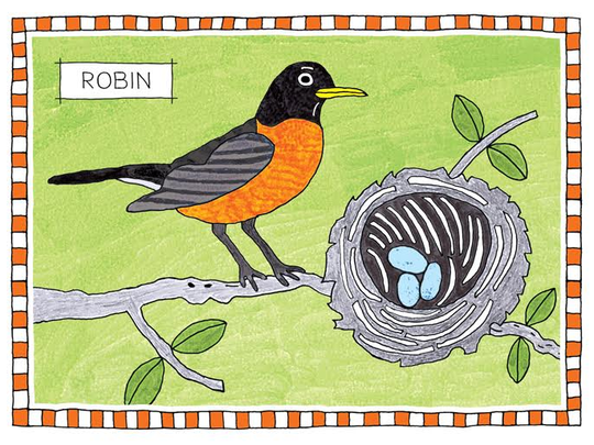 636601688182754008-James-Hogarth-Robin.png