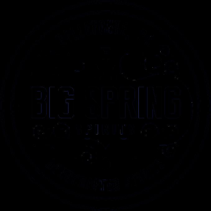 BSS logo crisp.jpg