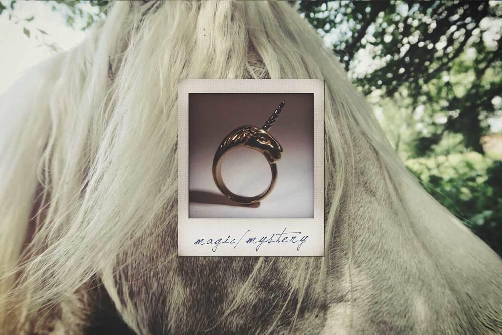 LN-polaroid-horse2.jpg