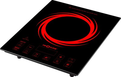 top 5 induction hot plates buyer 39 s guide and reviews. Black Bedroom Furniture Sets. Home Design Ideas