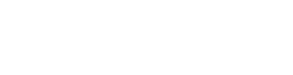 CSz Houston Business