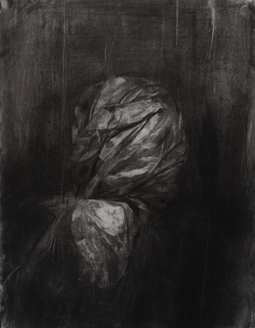 Bagged, 18x24 inch, charcoal, 2016
