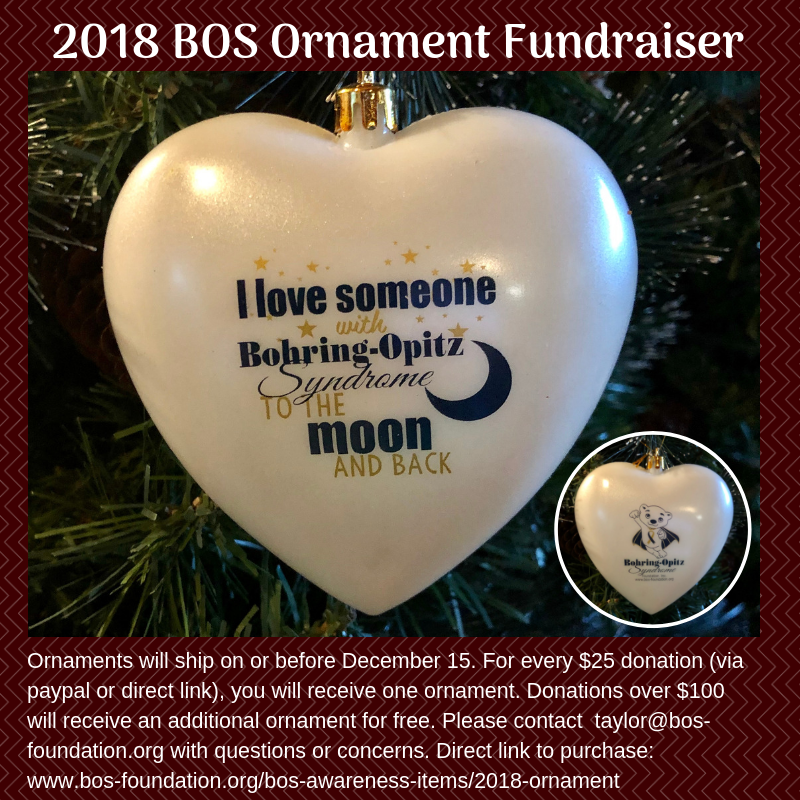 3rd Annual BOS Ornament Fundraiser (2).png