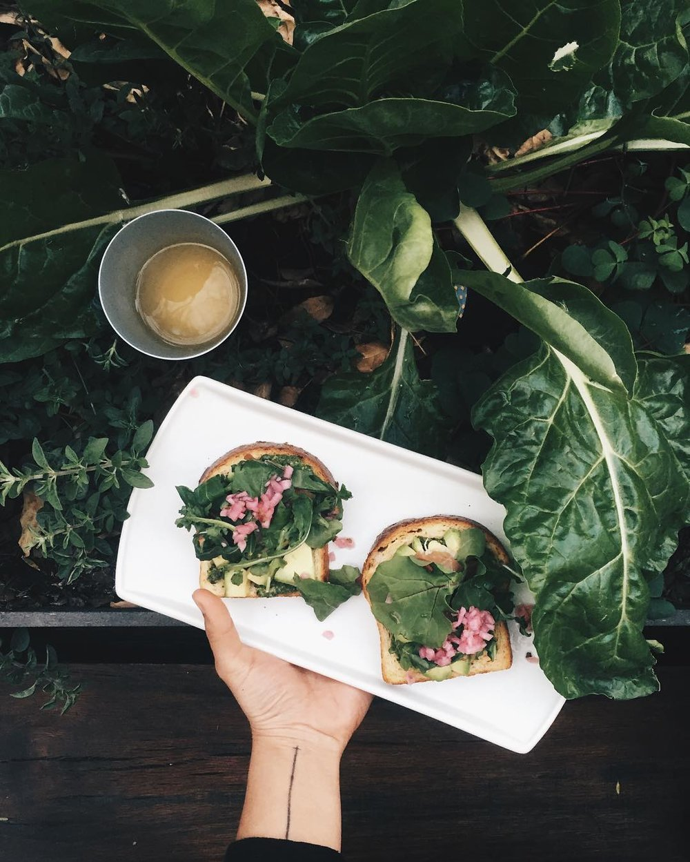 ultra-visual: ¡Ya abrimos TEO! There's nothing fresher than our Avocado Toast in @teo_mx 🍴🍞🍃 Ya pueden venir a probar las delicias del nuevo HotSpot de la Juarez en Havre 83 🍀 #GreenieLife #TeoLuncheonette #HealthyFood by lavicvic