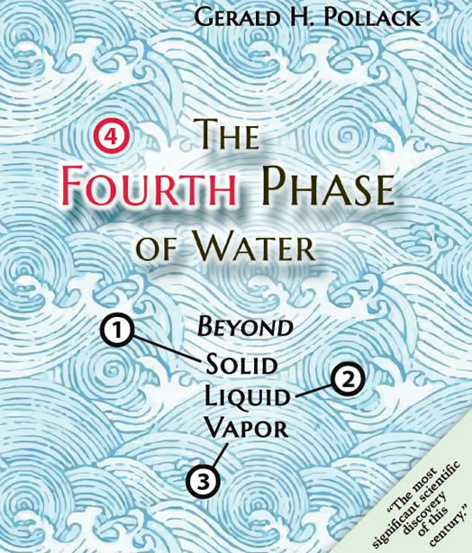 The Fourth Phase of Water by Gerald Pollack