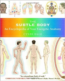 The Subtle Body by Cyndi Dale