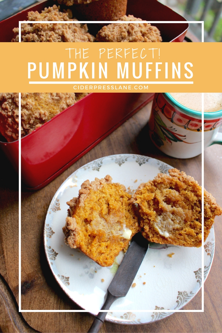 Pumpkin Muffins with Crumb Topping