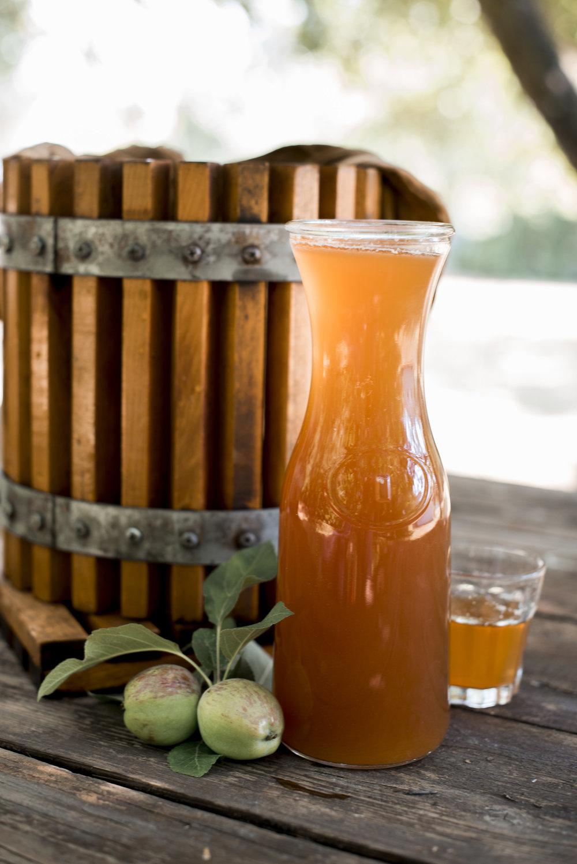 CiderPressing(63).JPG