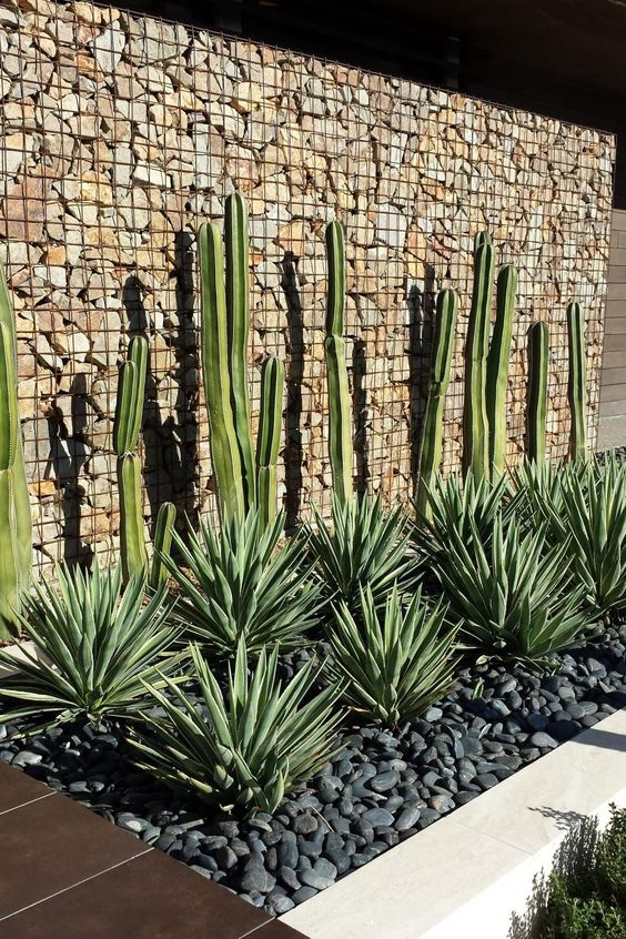 KMI Blog | Landscaping Inspiration