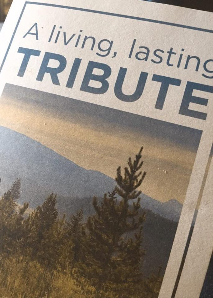 "From work friends <3 The inside reads, ""The Arbor Day Foundation has received a donation in memory of Noodle. As a tribute, a tree will be planted and registered in Tahoe National Forest. This memorial was given by Gentle Doctor Animal Hospitals. May this living monument to your friend comfort you during this time."" Thank you guys. I love you."