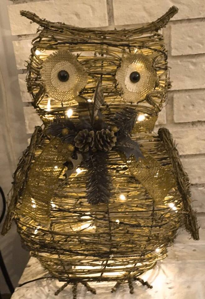 I love this owl so much!