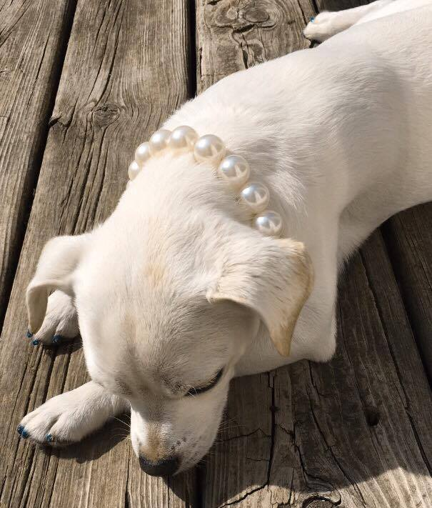 Aw Mom do I have to wear pearls? It's casual!