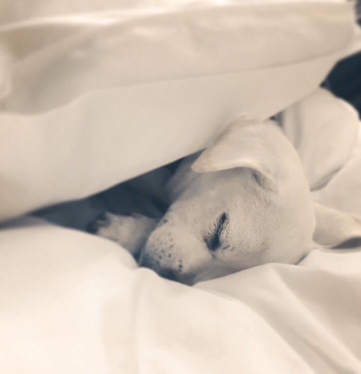 Sleep tight <3