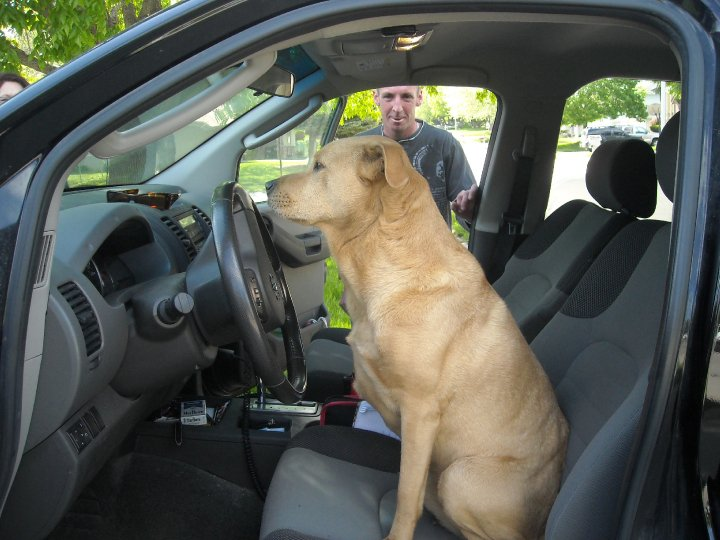 If JJ isn't going to drive, Bailey is going to take himself to the dog park.