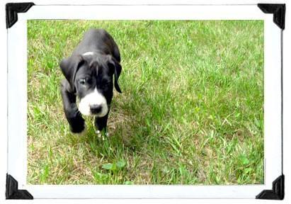 Tiny Baby Riley Nelson!