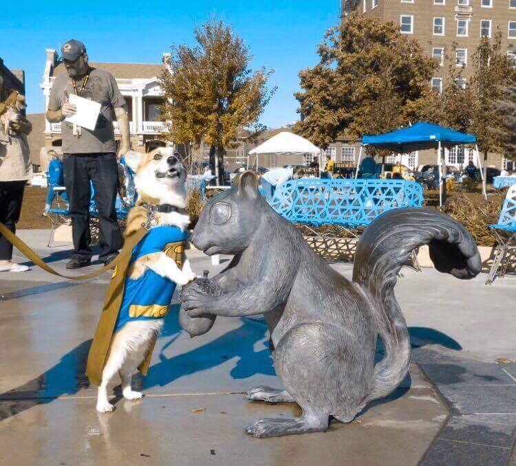 Super Toski and the Giant Squirrel of Council Bluffs