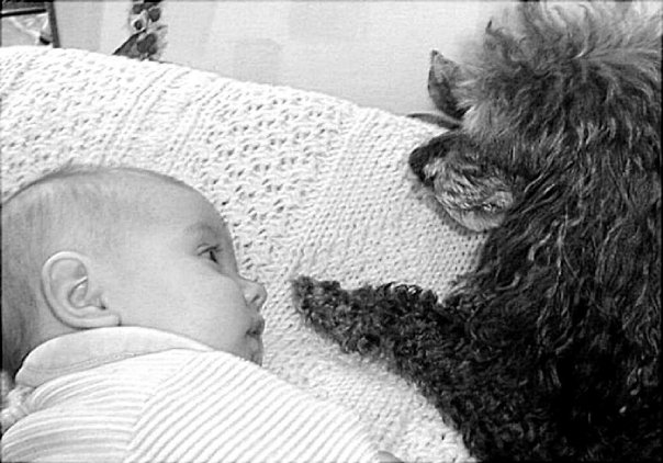 Amanda, 3 months and Benji, 11 years. They adored each other.