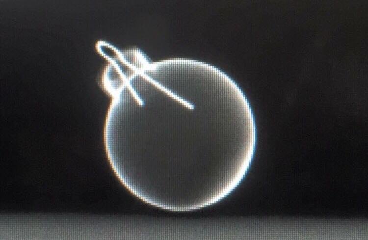 FinchDVM 10403.jpg