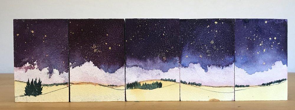 Prairie Wonder