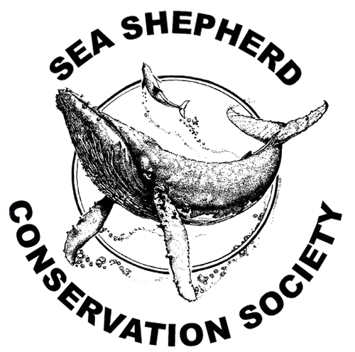 The Sea Shepherd Conservation Society is a non-profit, marine conservation organization based in Friday Harbor on San Juan Island, Washington, in the United States. Sea Shepherd uses direct action tactics to protect marine life. Learn more...