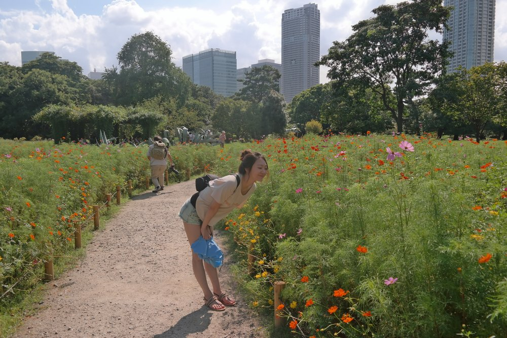 Harikyu gardens