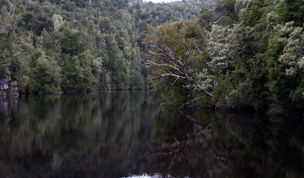 The Gordon River, Tasmania.
