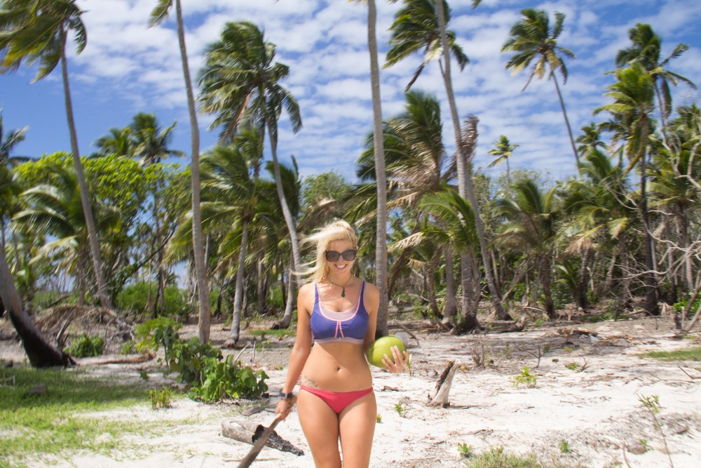 Miss Cova foraging for coconuts