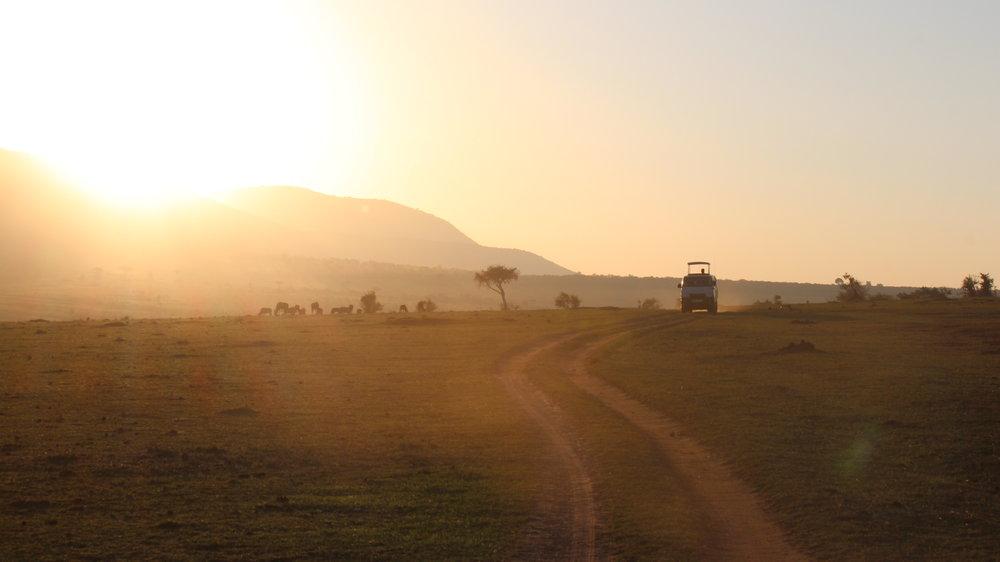 Maasai Mara, Kenya . July 2017