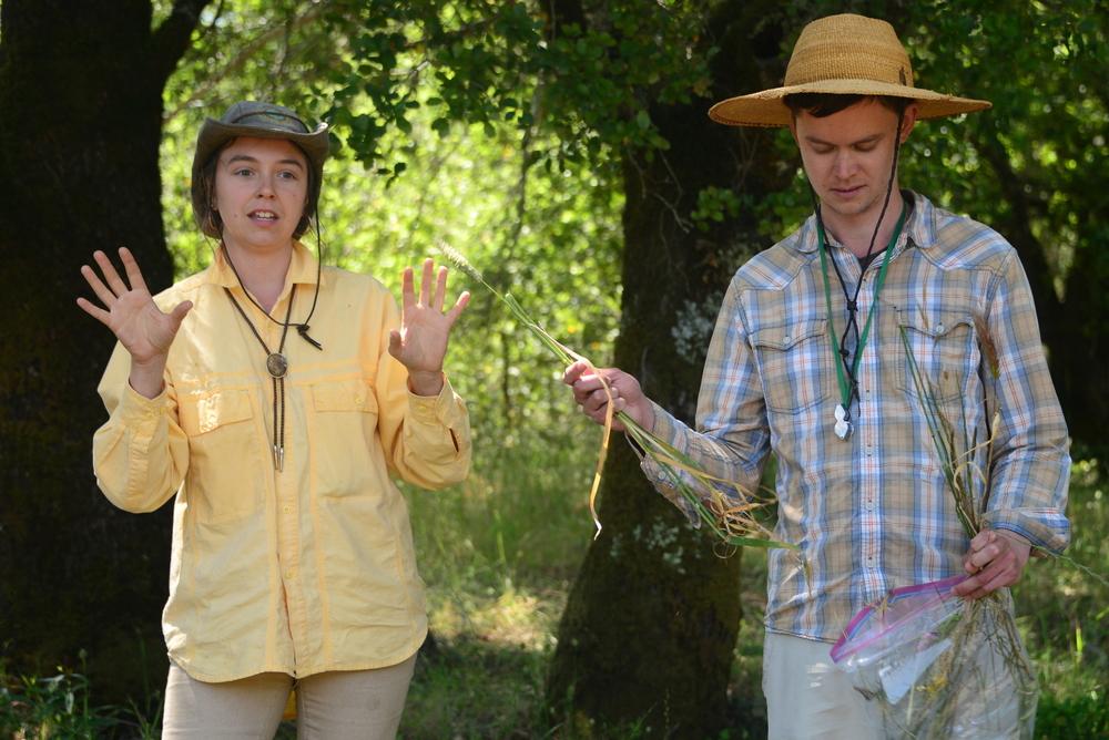 Botanists Claire Brown & Joe Broberg discuss grass identificaiton