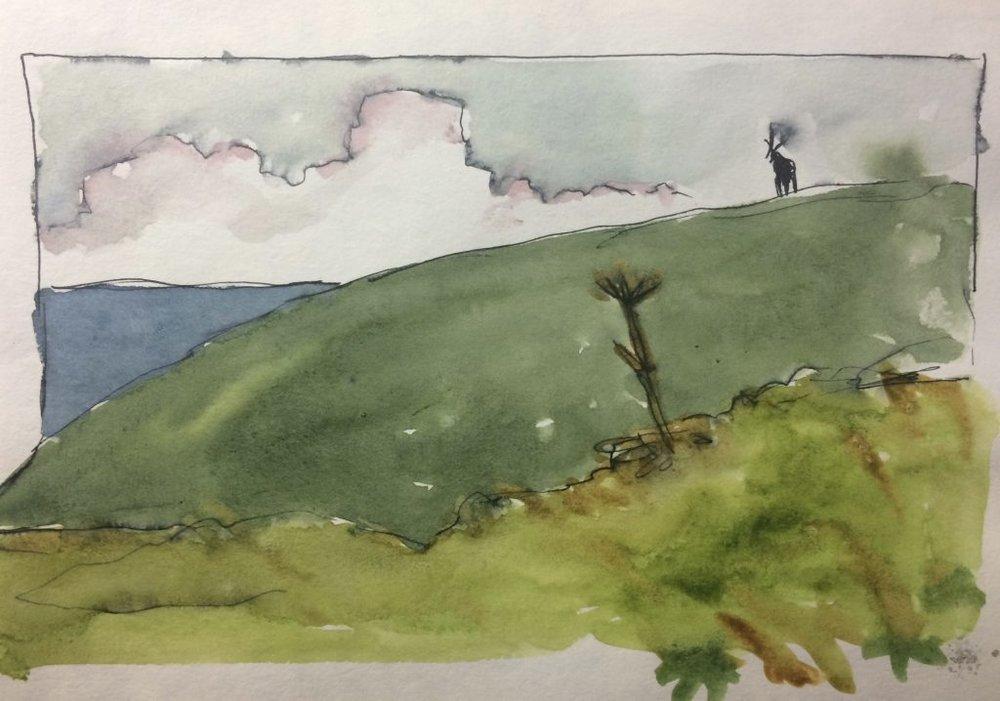 Tomales Point landscape with elk. Illustration by Marley Peifer.