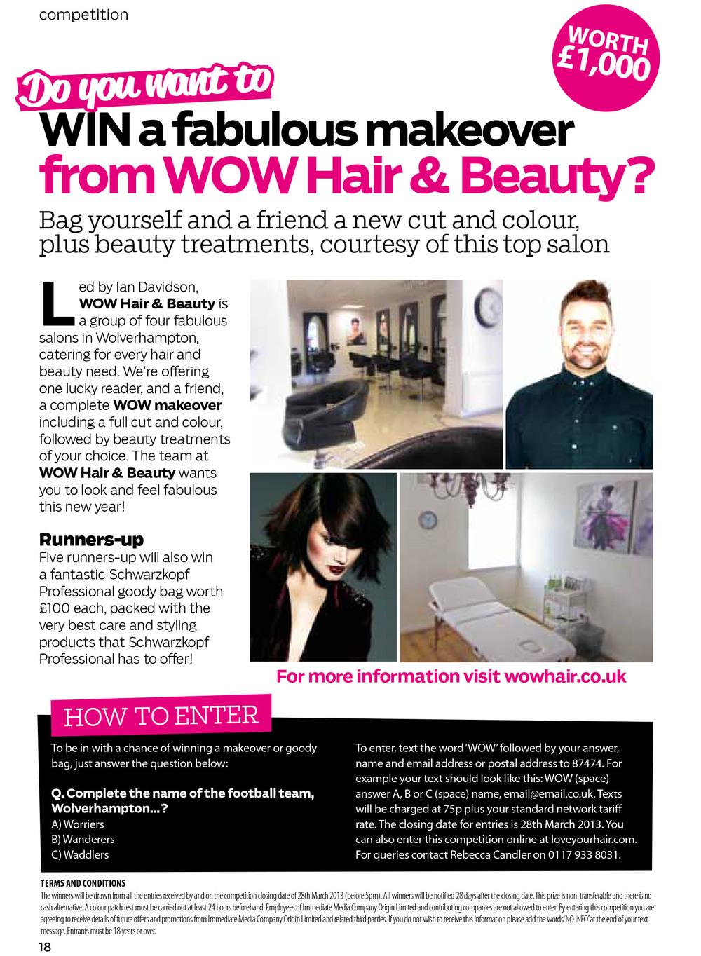 Hair Ideas - March 2013 - WOW competition.jpg
