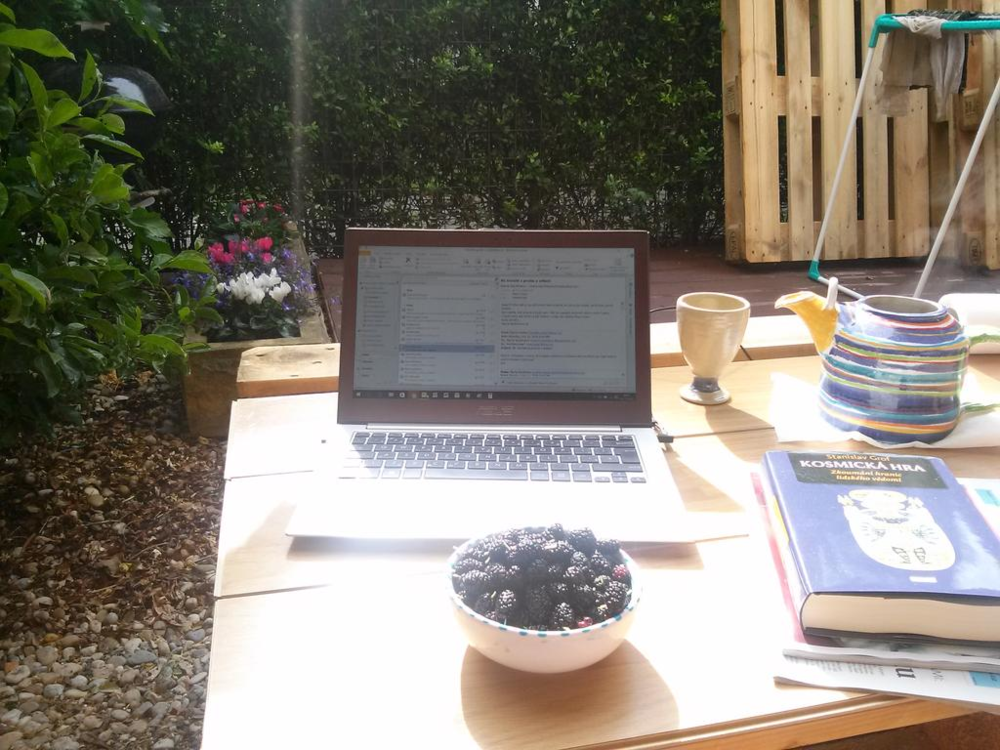 I have a love/hate relationship with working outside, while I love the change of scenery, I hate the glare and heat.  Still, I'd definitely spend some time at this setup with the tea and fruit.