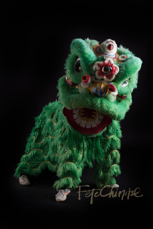 5ive15ifteen - Wushu Lions-10 WM.jpg
