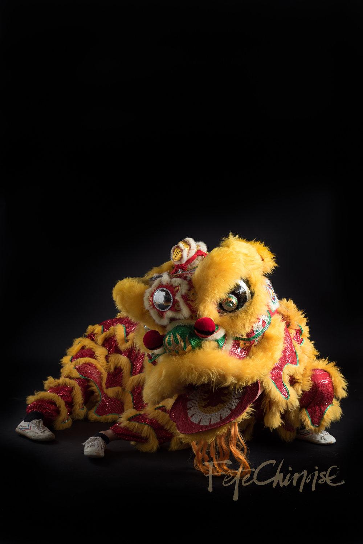 5ive15ifteen - Wushu Lions-12 WM.jpg