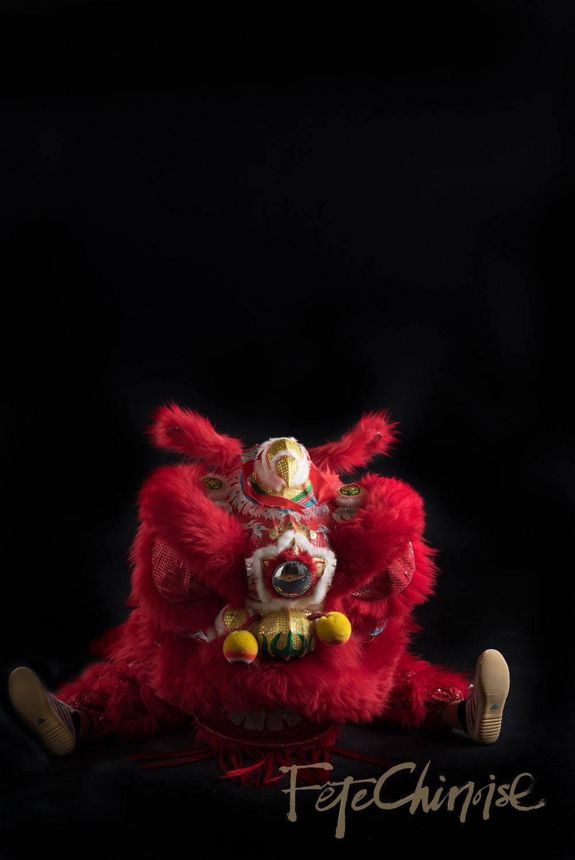 5ive15ifteen - Wushu Lions-17 WM.jpg
