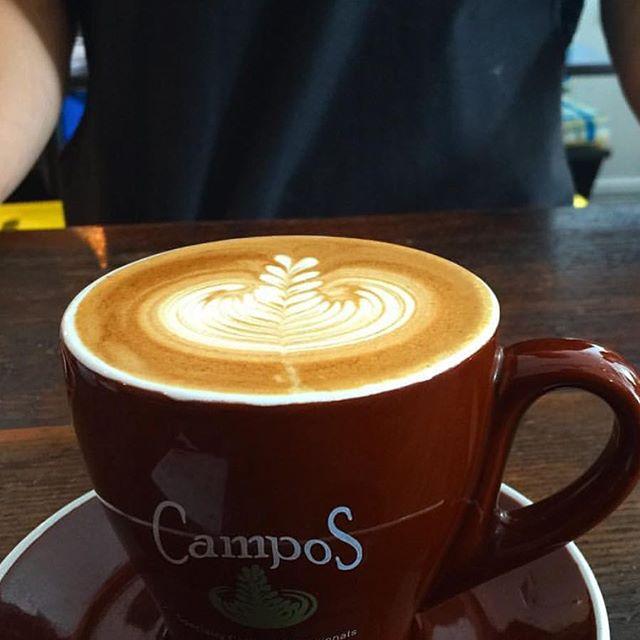 Lovely tuesday bright and sunny #coffeetime #kafeine #kafeinebalmain #balmainsydney #sydneycafe #latteart #coffeeporn #havealovelyday