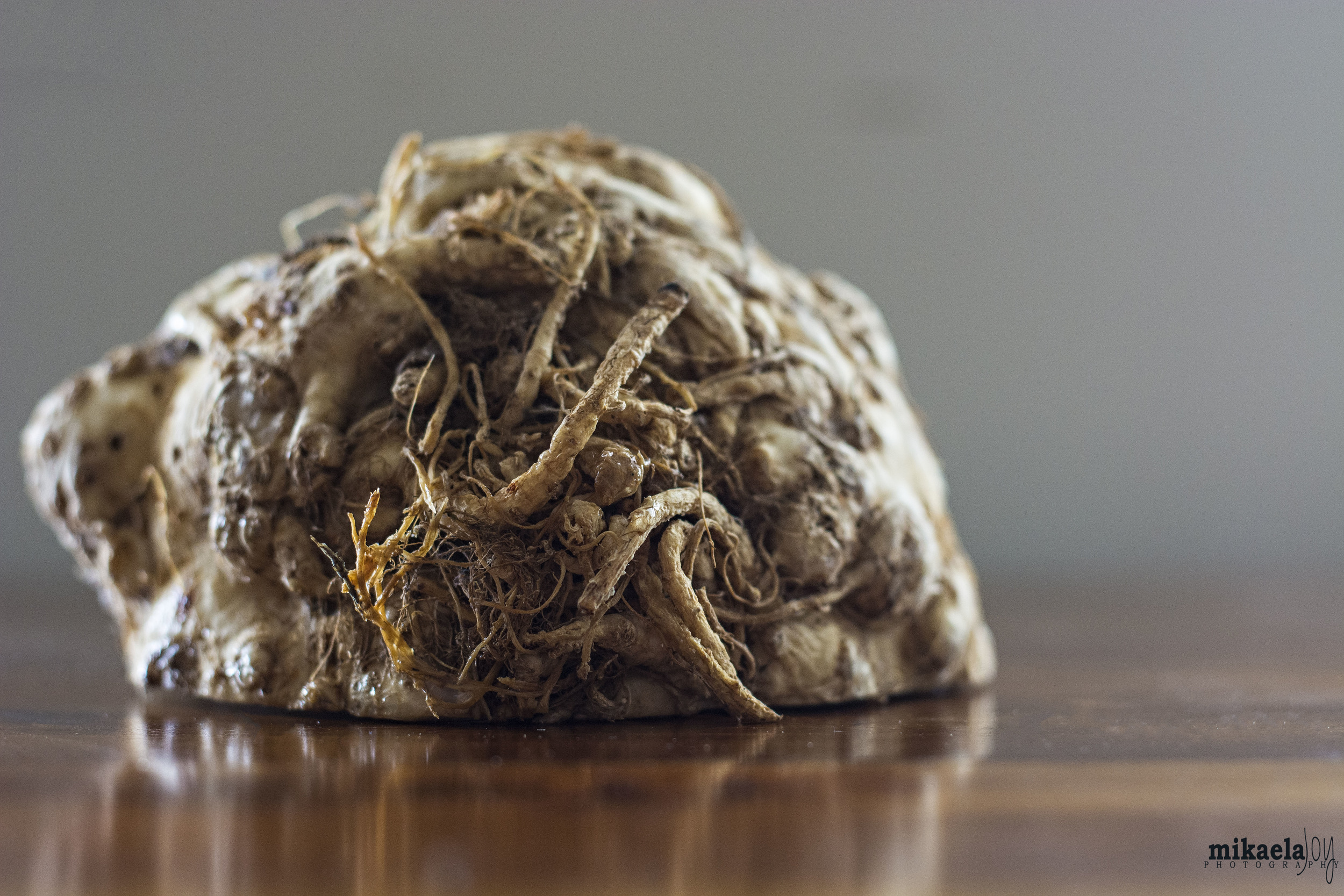 This is a vegetable: celery root, not one of the monsters under your bed.