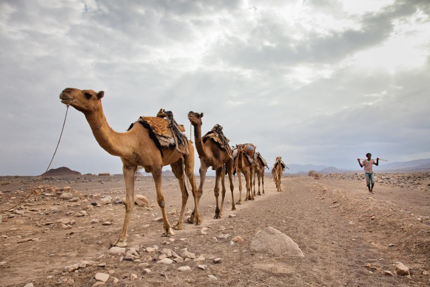 Ethiopia copyright maxVmax-106.jpg