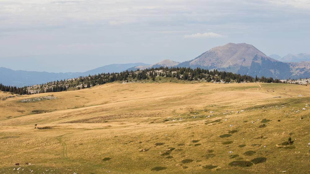 plateau-cenise-lac-de-lessy-hike