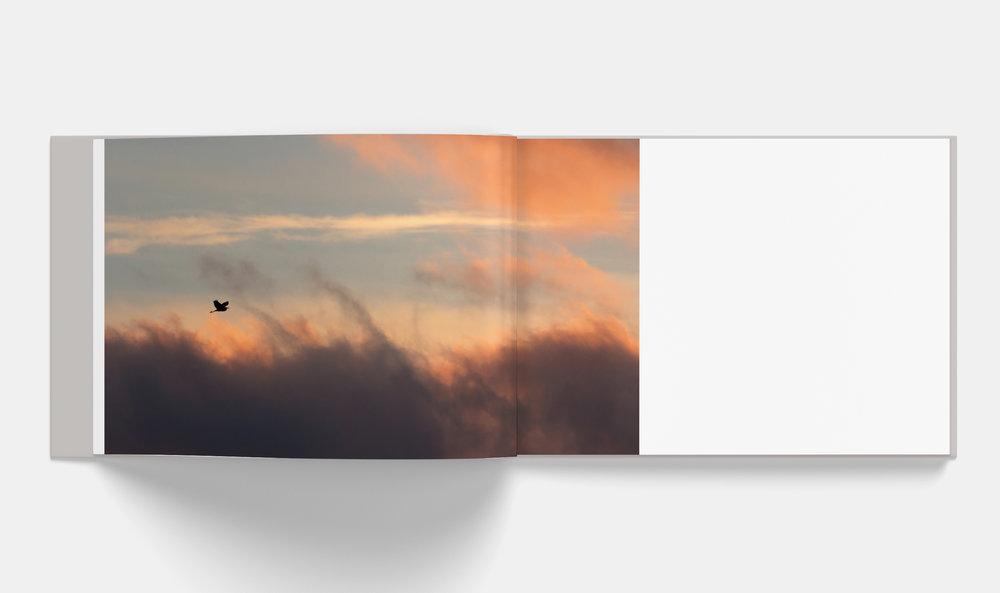 Horizontal_Book_Mockup_3-3.jpg