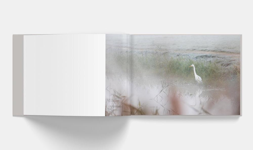 Horizontal_Book_Mockup_3-5.jpg
