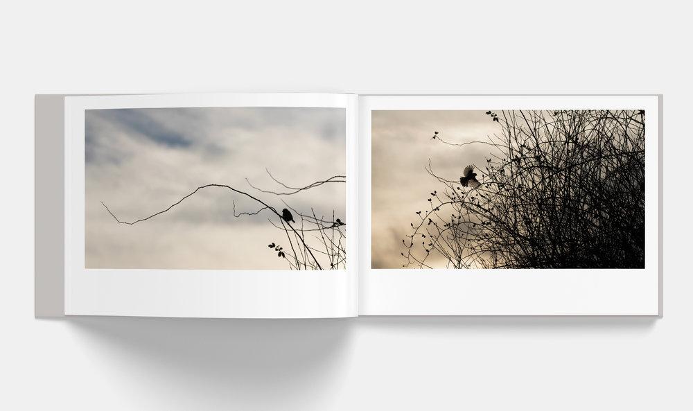 Horizontal_Book_Mockup_3-4.jpg