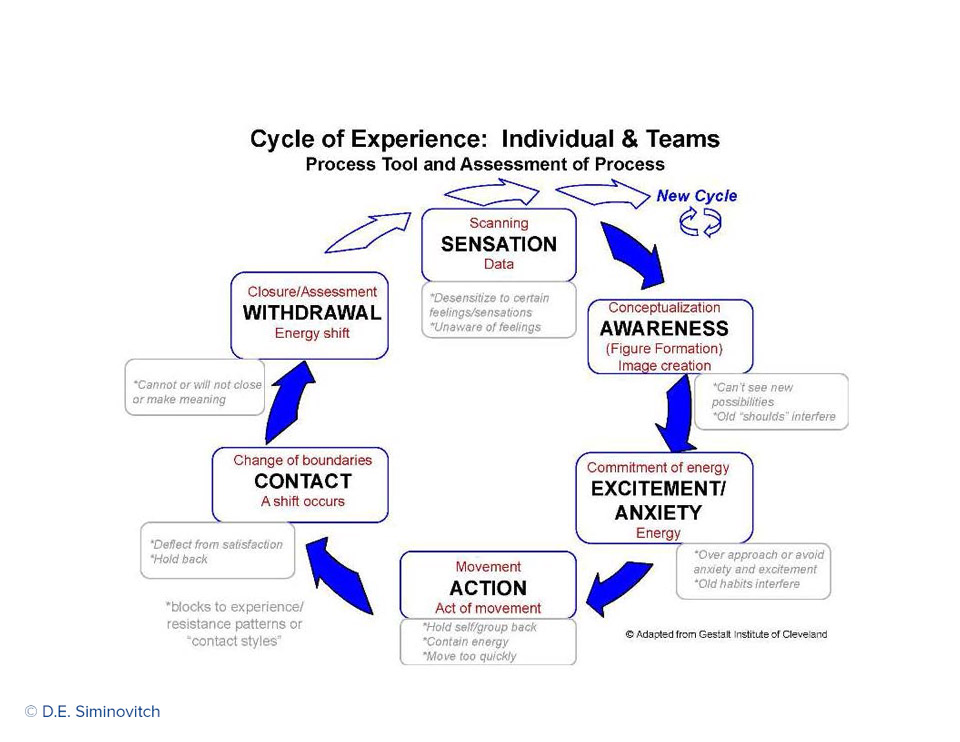 Cycle-Resistance-Individuals-and-Teams.jpg
