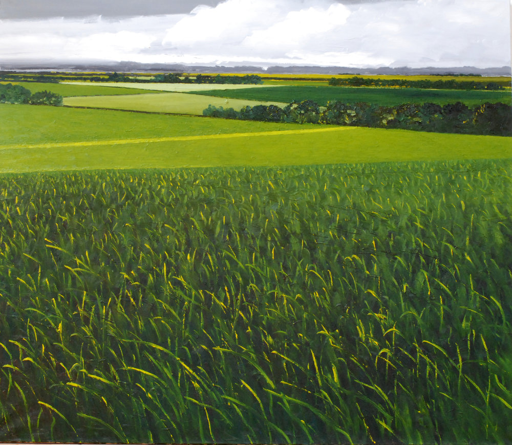 Field  (1997)  Hilary Dymond  Courtoisie galerie Claire Gastaud