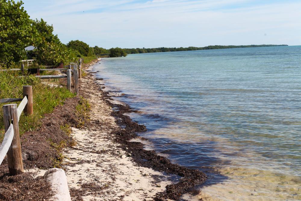 Florida Keys 2014-4.JPG