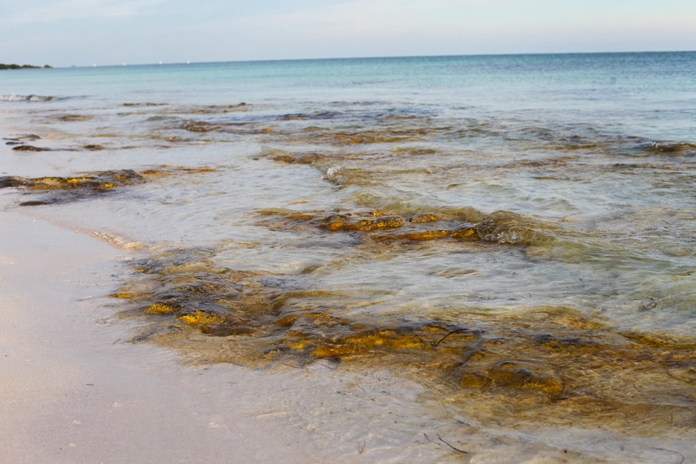 Florida Keys 2014-40.JPG