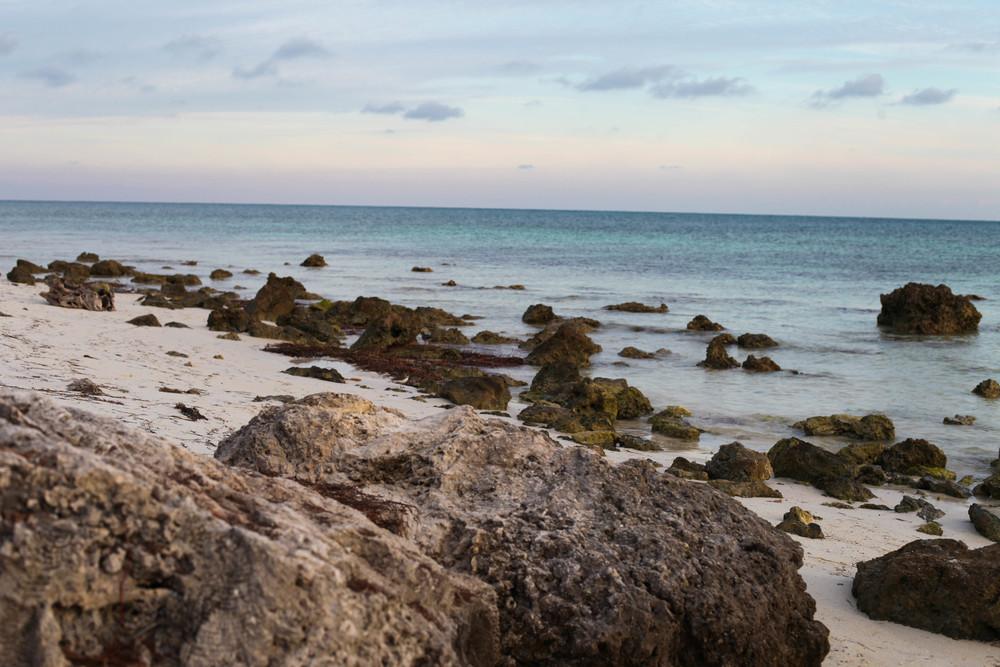 Florida Keys 2014-51.JPG