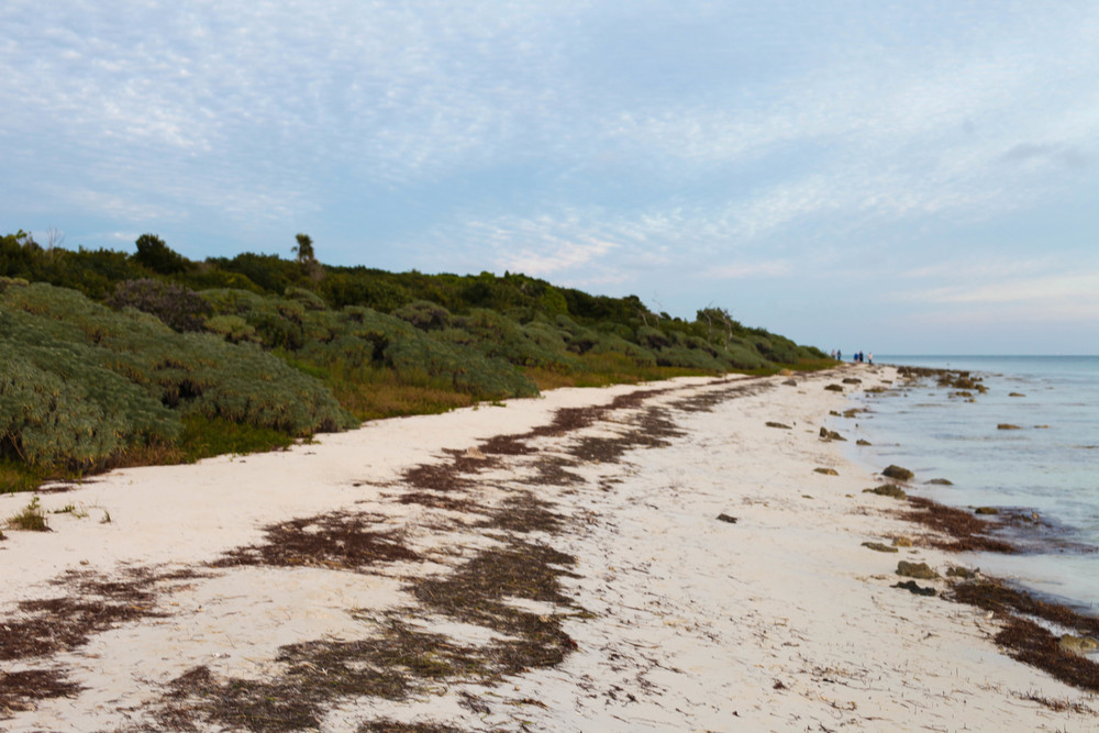 Florida Keys 2014-52.JPG