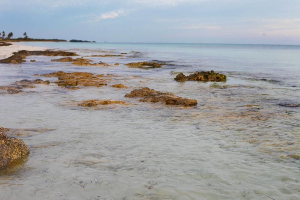 Florida Keys 2014-56.JPG