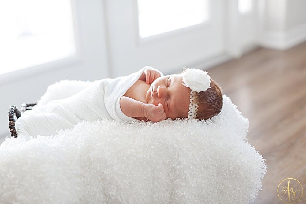Haven Newborn_0011.jpg